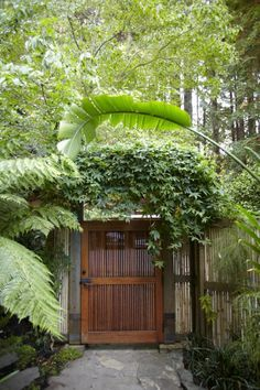 "A gate in Mill Valley, California. On the other side? Paradise. For the rest of this garden, see ""Rescuing a 100-Year-Old Garden."""