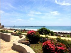 Linda Lane Park in San Clemente is a cute little park with an amazing view. If gazing at the ocean while the kids happily sway on swings and shoot Orange County Beaches, Beach Kids, San Clemente, California Usa, Mom Blogs, Summer Fun, Summertime, Road Trip, Sidewalk