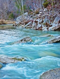 Clean Buff H20 sought to make a difference: Petition | Keep America's First National River, the Buffalo River, Clean and Pristine! | Change.org