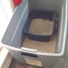 Oh, litter box problems! I hope this works!