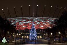 Choinka przed Stadionem Narodowym w Warszawie