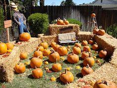 pumpkin patch set-up for pumpkin patch party