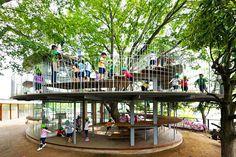 Una escuela infantil que gira alrededor de un árbol Esta imaginativa idea ha sido desarrollada en la ciudad de Tachikawa (Japón) en torno a un ejemplar de 50 años de olmo del agua o zelkova japonesa.