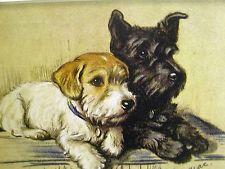 Lucy Dawson SCOTTISH TERRIER & SEALYHAM Collector Card 1930-40s Art Matted