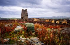Parys Mountain, Anglesey. If you take the Copper Trail Route, you will inevitably come across this beautiful place.