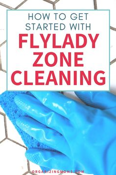 Fly Lady Cleaning, Zone Cleaning, Household Cleaning Tips, Cleaning Hacks, Italian Language, Korean Language, Japanese Language, Spanish Language, French Language