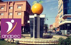 Offre d'emploi a Anapec Berkane: Recrutement de 12 Agents De Sécurité Contrat de Travail : Contrat d'insertion (Contrat anapec)...