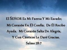 Salmo 28:7