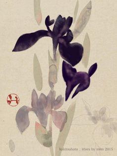 Hidetoshi Mito, Iris
