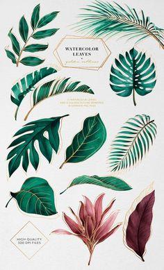 Free Printable Art, Plant Painting, Watercolor Leaves, Drawings, Tropical Painting, Flower Drawing, Art Series, Plant Art, Leaf Drawing