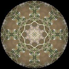 http://www.nikolasschiller.com/blog/index.php/archives/category/renderings/mandala/