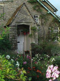 Beautiful garden flowers house