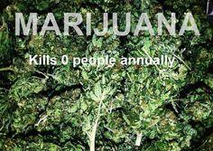kills 0 people annually