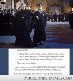 I still believe Professor McGonagall is the most amazing character in this series.