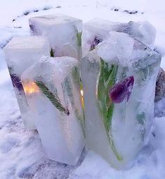 Jäälyhty maitopurkkeihin tehtynä, koristeina tulppaaneita