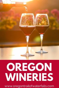 These Oregon wineries are incredible and so close to these Oregon wine country bed and breakfasts too! Salut! Portland Food Carts, Wine Making Process, Oregon Wine Country, Best Food Trucks, Oregon Waterfalls, Oregon Travel, Best Places To Eat, Wineries, Wine Drinks