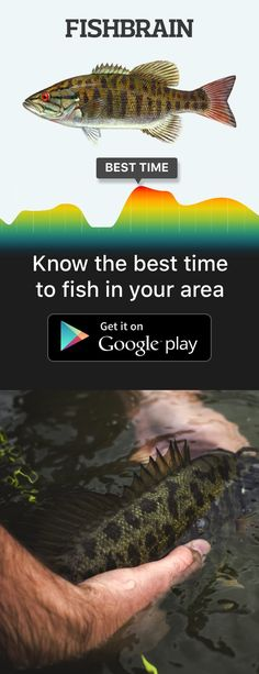 Smartest fishing forecast on earth!