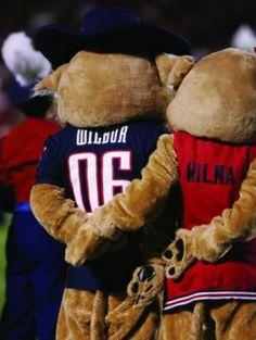 University of Arizona -- Wilbur & Wilma