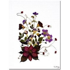 Trademark Fine Art Going Wild Canvas Art by Kathie McCurdy, Size: 24 x 32, Multicolor