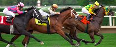 6 Of The Best Horse Races From Around The World