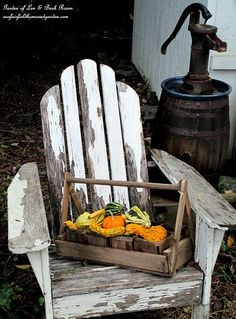 A little autumn vignette by our garden shed. Happy Fall to all ! (Garden of Len & Barb Rosen)