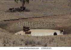 Landwirtschaft Dürre Stockfotos und -bilder | Shutterstock