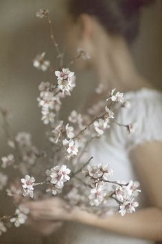 I like this image because of the gentleness it conveys. I also like the design of the cherry blossoms and the branch, the shapes draw me in. The colour palette is also along the lines of what I'd like to have. Earthy and peaceful
