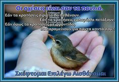 Perfect Word, Greek Quotes, Wisdom, Goals, Beatrix Potter, Smile, Laughing