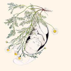 Art Hijab a hijab girl Pregnancy Art, Pregnancy Videos, Pregnancy Gifts, Birth Art, Birth Affirmations, Anatomy Art, Midwifery, Doula, Art Inspo