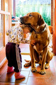 Kutya a legjobb barát