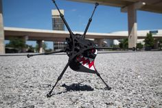 OutRunner, A Remote-Controlled Running Robot Inspired by Biology