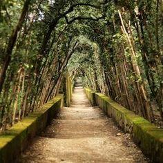 Le Ville e i Giardini Medicei Toscani Patrimonio dell'Unesco