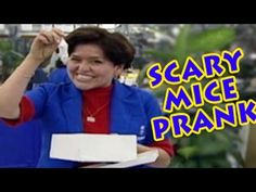 Funny Prank : Scary Mice In a ShoeBox