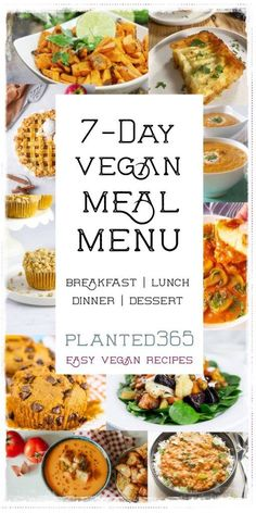 Labor Day is over and kids are back to school! Don't know what to cook tonight but want something healthy? Are you looking for vegan meal plan ideas? Need some recipes for Meatless Monday? This plant-based, vegan meal plan menu will help. A full day of easy-to-make recipes that will keep you happy and satisfied. Healthy Eating Recipes, Delicious Vegan Recipes, Whole Food Recipes, Vegan Meal Plans, Vegan Meal Prep, Vegetarian Lunch, Vegetarian Recipes, Recipes From Heaven, Easy Food To Make