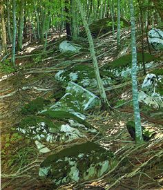 Neil Welliver, wikipaintings.org