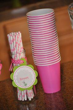 "Photo 1 of 35: Pink & green Ladybugs / Birthday ""Keira's 2nd Pink Ladybug birthday party!""   Catch My Party"