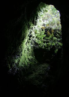 A haven for anyone interested in caves, volcanoes, or geology, the Hana Lava Tube is perhaps one of Maui's greatest natural wonders. The underground lavascape was formed some 30,000 years ago when an eruption of Mount Haleakala caused molten lava to flow down the mountainside near what is now Hana.