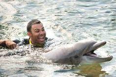 Lucky dolphin!