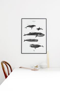 Kētos: a new print in the shop - cocolapine.bigcartel.com