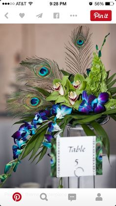 Table centerpieces x 13 tables. Similar to this, but with calla lilies, teal orchids and peacock feathers.