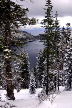 Have a white Christmas and a cup of coffee in a cozy cabin at Lake Tahoe