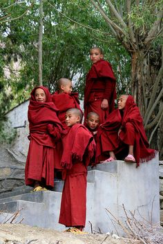 Contemplation, young Monks, Ladakh, Jammu and Kashmir, India Tibet, Buddha Buddhism, Buddhist Monk, Ladakh India, Kashmir India, Religion, Northeast India, Little Buddha, Beauty Around The World