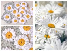 Madeliefjesdeken haken - daisies | Photo tutorial of how to create the daisy http://tillietulip.blogspot.nl/2012/06/to-beg-chain-ch-5-and-join-to-form.html