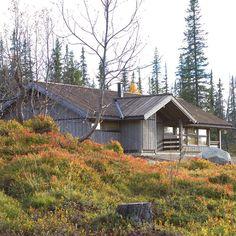 Hedda-hytte i høstlige omgivelser ❤️ Project 3, Door Wall, Exterior Doors, Cabin, Windows, House Styles, Instagram, Home Decor, Decoration Home
