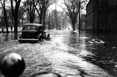 Cars navigate downtown Fredericton during the 1936 flood.