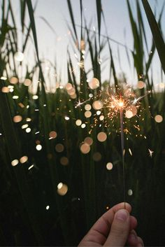 Sparks in a field. Beautiful.