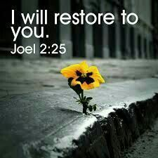 I will restore to you. Joel 2:25  Nov29.17W 7:02p