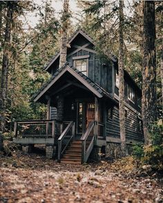 A cold wind was blowing from the north, and it made the trees rustle like living things in this amazing cabin ✨
