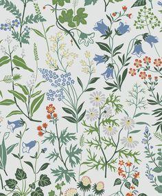 Flora by Boråstapeter - White - Wallpaper : Wallpaper Direct Botanical Wallpaper, More Wallpaper, White Wallpaper, Wallpaper Online, Wall Wallpaper, Meadow Flowers, Wild Flowers, Spring Garden, Scandinavian Design