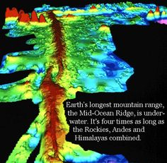 Topographic map of Mid-Oceanic Ridge [This Dynamic Earth, USGS] Science Geek, Teaching Science, Earth Science, Science And Nature, Teaching Ideas, Ap Environmental Science, Holistic Education, Spaceship Earth, Plate Tectonics